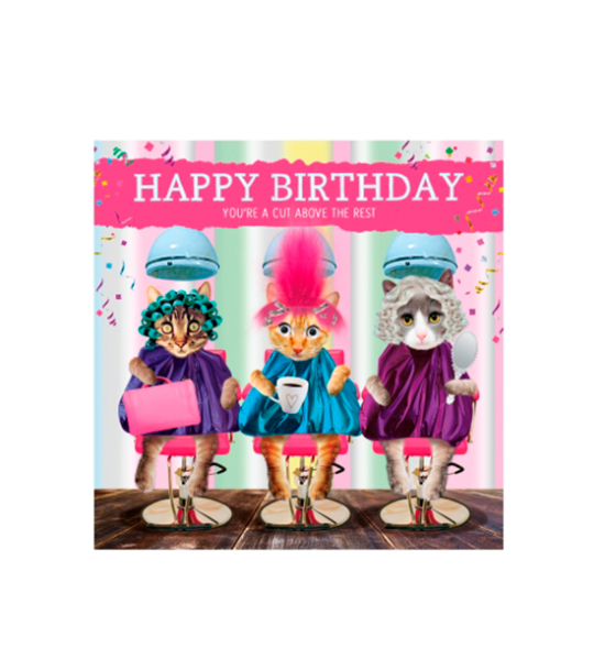 Birthday funky quirky unusual modern cool card cards greetings greeting original classic wacky contemporary art illustration fun vintage retro fluff googly eyes googlies tracks cats hairdressers cut above rest ladies
