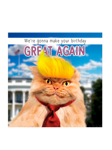 Birthday funky quirky unusual modern cool card cards greetings greeting original classic wacky contemporary art illustration fun vintage retro fluff googly eyes googlies tracks trump cat