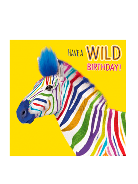 Birthday funky quirky unusual modern cool card cards greetings greeting original classic wacky contemporary art illustration fun vintage retro fluff googly eyes googlies tracks wild multicoloured rainbow zebra