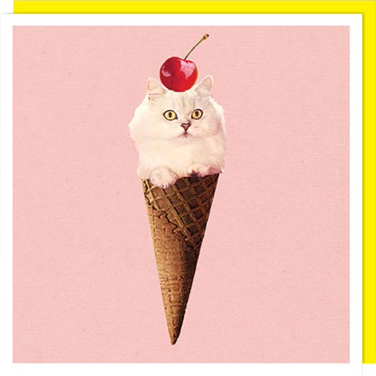 Birthday funky quirky unusual modern cool card cards greetings greeting original classic wacky contemporary art illustration fun vintage retro funny let-rip cat ice cream cone cherry U-Studio collage