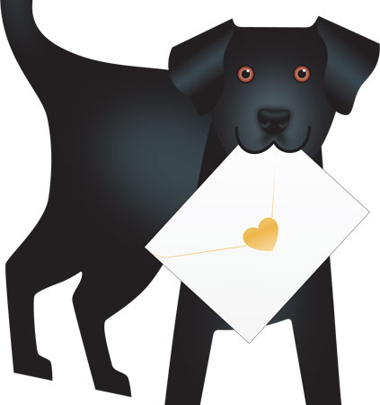funky quirky unusual modern cool card cards greetings greeting original classic wacky contemporary art photographic fun vintage retro jet 3D cut-out special-delivery dog Labrador