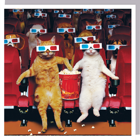 3D glasses cats cinema popcorn funky quirky unusual modern cool card cards greetings greeting original classic wacky contemporary art humorous 1000-words photographic U-Studio