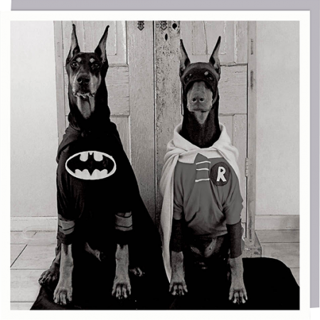 1000-words superhero dog batman robin funny photographic U-Studio funky quirky unusual modern cool card cards greetings greeting original classic wacky contemporary art humorous