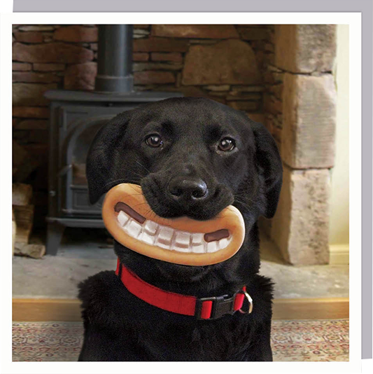 funky quirky unusual modern cool card cards greetings greeting original classic wacky contemporary art humorous 1000-words Wallace and Gromit photographic dog mouth U-Studio