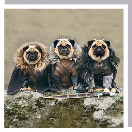 funky quirky unusual modern cool card cards greetings greeting original classic wacky contemporary art humorous 1000-words dog pug game-of-thrones costume photographic U-Studio