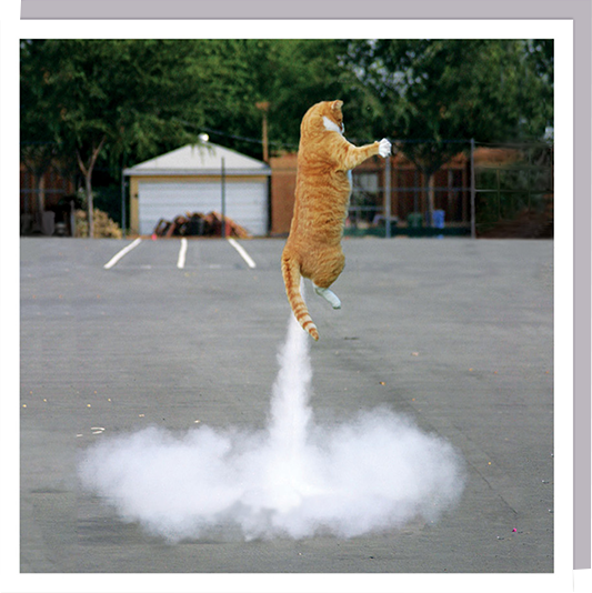 1000-words cat rocket funky quirky unusual modern cool card cards greetings greeting original classic wacky contemporary art humorous photographic U-Studio