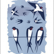 swallows tweet carry-akroyd screenprint Art-Angels birds funky quirky unusual modern cool card cards greetings greeting original classic wacky contemporary art illustration fun vintage retro