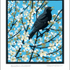 funky quirky unusual modern cool card cards greetings greeting original classic wacky contemporary art illustration fun vintage retro linocut Roger-gillmor blackbird blackthorn Art-Angels