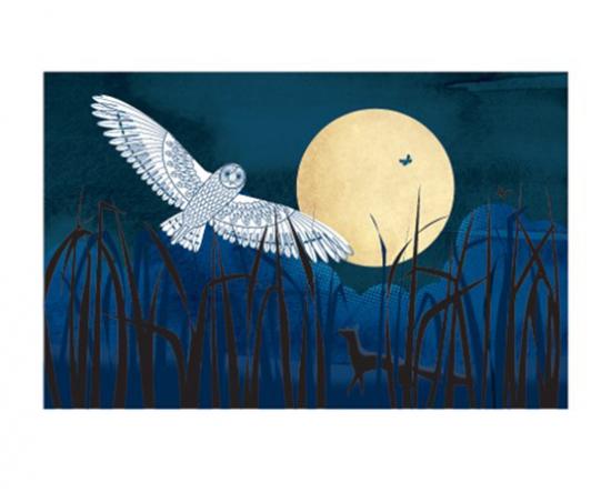 funky quirky unusual modern cool card cards greetings greeting original classic wacky contemporary art illustration fun vintage retro owl moon harvest Art-Angels sally-elford screenprint
