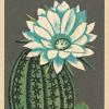 art-press funky quirky unusual modern cool card cards greetings greeting original classic wacky contemporary art illustration fun vintage retro matchbox flower elegance