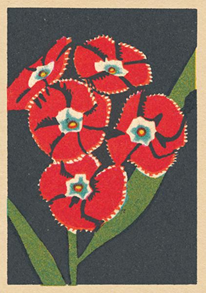 flower funky quirky unusual modern cool card cards greetings greeting original classic wacky contemporary art illustration fun vintage retro matchbox art-press splendour