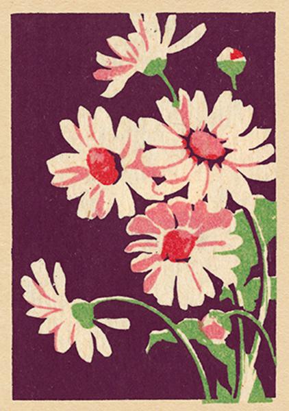 ffunky quirky unusual modern cool card cards greetings greeting original classic wacky contemporary art illustration fun retro flower art-press vintage matchbox grace