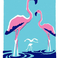 Birthday funky quirky unusual modern cool card cards greetings greeting original classic wacky contemporary art illustration fun vintage retro letterpress flamingo Archivist-Cards
