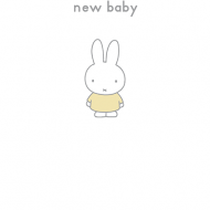 bunny rabbit funky quirky unusual modern cool card cards greetings greeting original classic wacky contemporary art illustration photographic vintage retro kids book miffy dick bruna hype-cards new baby