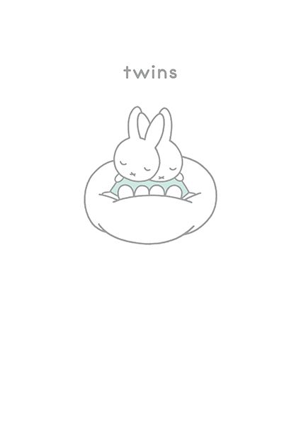 twins new baby miffy dick-bruna hype-cards