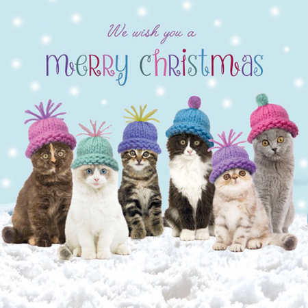 Marie-curie charity funky quirky unusual modern cool card cards greetings greeting original classic wacky contemporary art illustration photographic distinctive vintage retro Christmas xmas Tracks humourous funny cute cats hats
