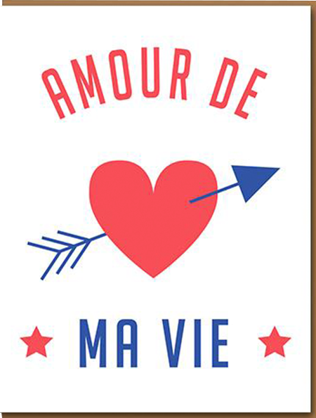 funky quirky unusual modern cool card cards greetings greeting original classic wacky contemporary art illustration photographic distinctive vintage retro humourous funny 1973 nineteen seventy three valentine valentine's-day letterpress love amour de ma vie