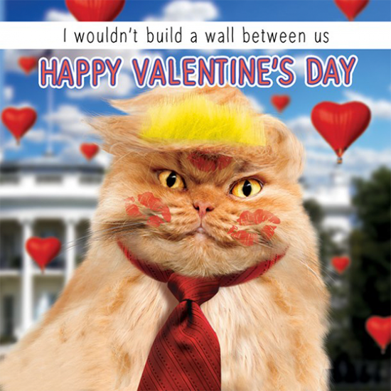 funky quirky unusual modern cool card cards greetings greeting original classic wacky contemporary art illustration photographic distinctive vintage retro humourous funny Tracks fluff google eyes valentine valentine's-day trump cat wall