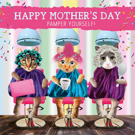 cats pamper funky quirky unusual modern cool card cards greetings greeting original classic wacky contemporary art illustration photographic distinctive vintage retro humourous funny mother's day mum mother mummy card googly eyes googles tracks fluff