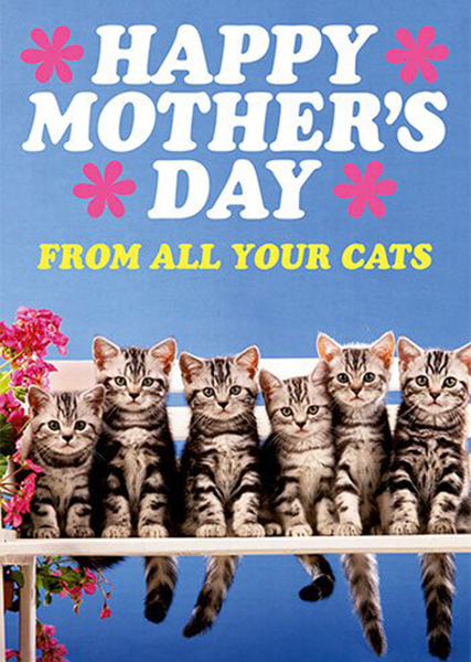 funky quirky unusual modern cool card cards greetings greeting original classic wacky contemporary art illustration photographic distinctive vintage retro humourous funny mother's day mum mother mummy card Dean Morris cats