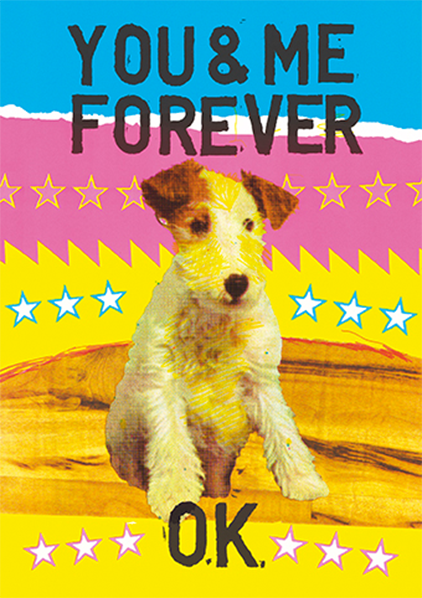 funky quirky unusual modern cool card cards greetings greeting original classic wacky contemporary art illustration photographic distinctive vintage retro Magda archer artpress fuzzy duck dog you and me forever ok ma2626