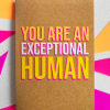 Birthday funky quirky unusual modern cool card cards greetings greeting original classic wacky contemporary art illustration fun funny vintage retro Bettie-Confetti neon colourful slogan you are an exceptional human
