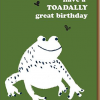 funky quirky unusual modern cool card cards greetings greeting original classic wacky contemporary art illustration photographic distinctive vintage retro eggpress 1973 nineteen seventy three letterpress birthday malarkey toadally great toad frog ep0521
