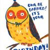funky quirky unusual modern cool card cards greetings greeting original classic wacky contemporary art illustration photographic distinctive vintage retro eggpress 1973 nineteen seventy three letterpress birthday malarkey ep0549 owl be darned