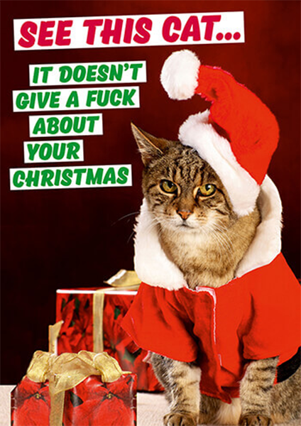 funky quirky unusual modern cool card cards greetings greeting original classic wacky contemporary art illustration photographic distinctive vintage retro Christmas xmas malarkey dean morris humourous funny cat doesn't give a fuck dmx213