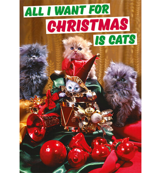 Malarkey Cards sell funky quirky unusual modern cool original classic wacky contemporary art illustration photographic distinctive vintage retro greetings cards Christmas xmas Dean Morris all I want for Christmas is cats dmx237