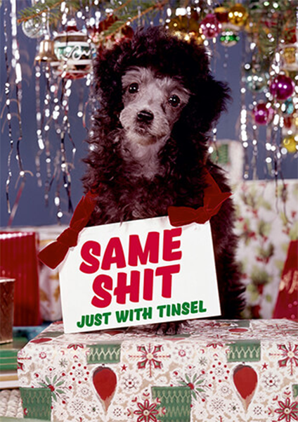 funky quirky unusual modern cool card cards greetings greeting original classic wacky contemporary art illustration photographic distinctive vintage retro Christmas xmas malarkey dean morris humourous funny same shit just with tinsel dog dmx270
