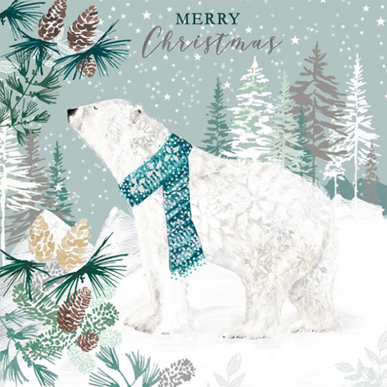 funky quirky unusual modern cool card cards greetings greeting original classic wacky contemporary art illustration photographic distinctive vintage retro Christmas xmas Tracks humourous funny cute charity packs polar bear Marie curie xjs009 malarkey