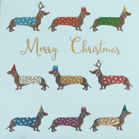 funky quirky unusual modern cool card cards greetings greeting original classic wacky contemporary art illustration photographic distinctive vintage retro Christmas xmas Tracks humourous funny cute charity packs dachshund dogs xps011 malarkey