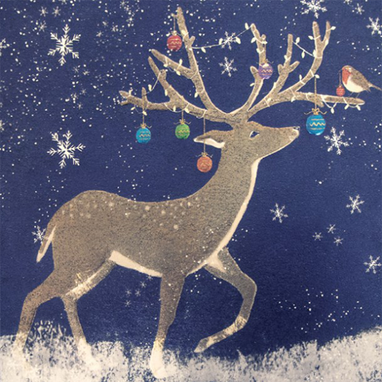 funky quirky unusual modern cool card cards greetings greeting original classic wacky contemporary art illustration photographic distinctive vintage retro Christmas xmas Tracks humourous funny cute charity packs reindeer malarkey Marie curie xps013