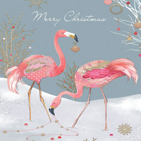 funky quirky unusual modern cool card cards greetings greeting original classic wacky contemporary art illustration photographic distinctive vintage retro Christmas xmas Tracks humourous funny cute charity packs flamingoes malarkey rainbow trust xps016