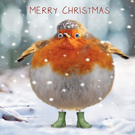 funky quirky unusual modern cool card cards greetings greeting original classic wacky contemporary art illustration photographic distinctive vintage retro Christmas xmas Tracks humourous funny cute robin googles malarkey xs237