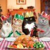 funky quirky unusual modern cool card cards greetings greeting original classic wacky contemporary art illustration photographic distinctive vintage retro Christmas xmas Tracks cats family dinner xmas XS279 funny flitter cute