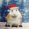 funky quirky unusual modern cool card cards greetings greeting original classic wacky contemporary art illustration photographic distinctive vintage retro Christmas xmas Tracks Humorous funny cute malarkey hamster flitter xs280