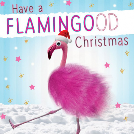funky quirky unusual modern cool card cards greetings greeting original classic wacky contemporary art illustration photographic distinctive vintage retro Christmas xmas Tracks Humorous funny cute malarkey flamingo flamingood xs377 googlies googly eyes fluff