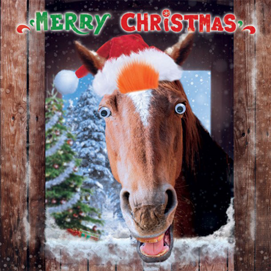 funky quirky unusual modern cool card cards greetings greeting original classic wacky contemporary art illustration photographic distinctive vintage retro Christmas xmas Tracks Humorous funny cute malarkey horse xs378 googlies googly eyes fluff