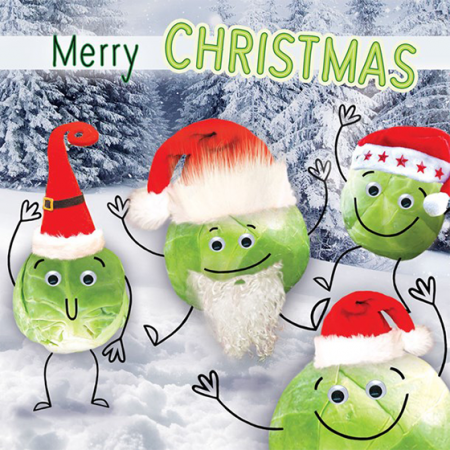funky quirky unusual modern cool card cards greetings greeting original classic wacky contemporary art illustration photographic distinctive vintage retro Christmas xmas Tracks Humorous funny cute malarkey Brussel sprouts xs380 Santa hats googlies googly eyes fluff