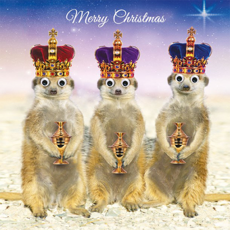 funky quirky unusual modern cool card cards greetings greeting original classic wacky contemporary art illustration photographic distinctive vintage retro Christmas xmas Tracks Humorous funny cute malarkey meerkats kings xs451 googlies googly eyes