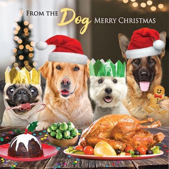 funky quirky unusual modern cool card cards greetings greeting original classic wacky contemporary art illustration photographic distinctive vintage retro Christmas xmas Tracks humourous funny cute dogs Christmas dinner from the dog malarkey naughty by nature xs459