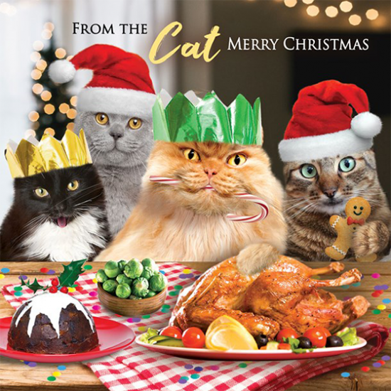 funky quirky unusual modern cool card cards greetings greeting original classic wacky contemporary art illustration photographic distinctive vintage retro Christmas xmas Tracks humourous funny cute cats from the cat malarkey naughty by nature xs460