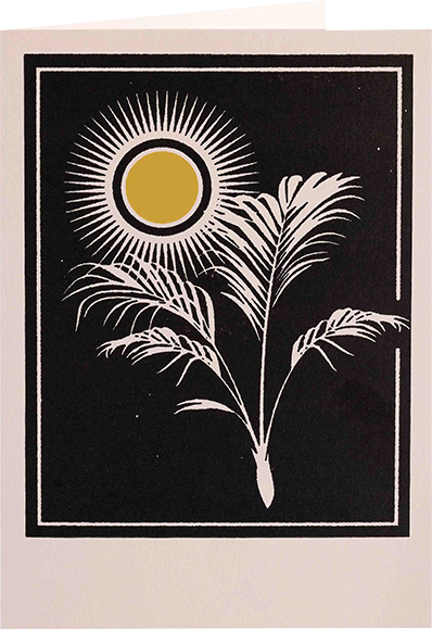 Malarkey Cards Brighton sell funky quirky unusual modern cool card cards greetings greeting original classic wacky contemporary art photographic birthday fun vintage letterpress archivist real-fun-wow QP513 papyrus sun palm plant