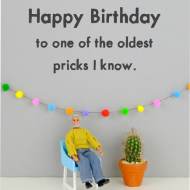 Malarkey Cards Brighton sell funky quirky unusual modern cool card cards greetings greeting original classic wacky contemporary art photographic fun vintage rude jeffrey janice dolls bold & bright miniature JJB037 happy birthday to the oldest prick i know cactus