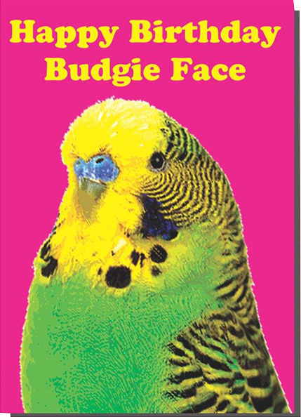 Malarkey Cards Brighton sell funky quirky unusual modern cool card cards greetings greeting original classic wacky contemporary art photographic birthday fun vintage bite your granny toy pincher budgie face birthday