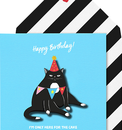 Malarkey Cards Brighton sell funky quirky unusual modern cool card cards greetings greeting original classic wacky contemporary art photographic birthday fun vintage tache 3D modern missy MM11 grumpy cat I'm only here for the cake