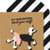 Malarkey Cards Brighton sell funky quirky unusual modern cool card cards greetings greeting original classic wacky contemporary art photographic birthday fun vintage tache 3D modern missy MM18 strut your stuff sassy poodle dog