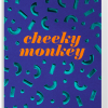 Malarkey Cards Brighton sell funky quirky unusual modern cool card cards greetings greeting original classic wacky contemporary art photographic birthday fun vintage Lagom Design cheeky monkey post